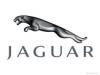 ZAKIYYAH GREER Jaguar review